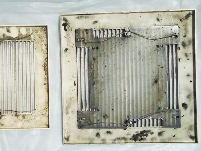 カビが増殖した換気扇の蓋裏